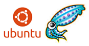 How to Setup Squid Proxy in Ubuntu